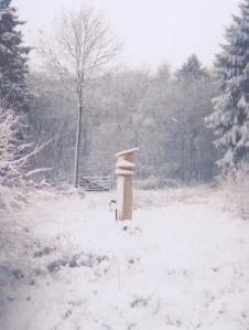 pilla in the snow